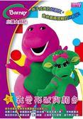 小博士邦尼(5):我愛形狀與顏色(DVD)