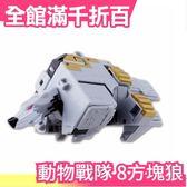 【小福部屋】【方塊狼】日本 日版原裝 萬代BANDAI 動物戰隊 DX 8號魔術動物方塊 獸王者