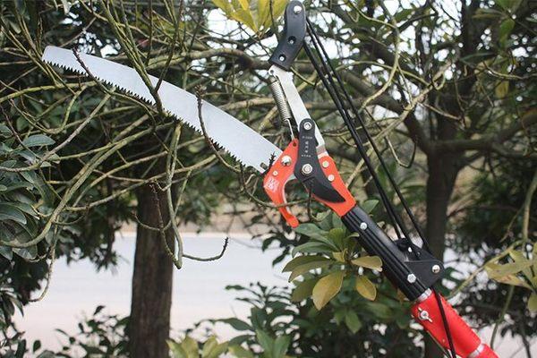 進口園藝伸縮高空剪高枝剪子高空鋸樹枝剪刀修枝剪園林工具高枝鋸 提拉米蘇
