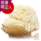 Global Fresh 日本長野金針菇15入 200g/包【免運直出】