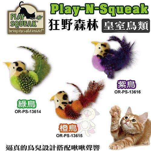 *WANG*PLAY-N-SQUEAK 狂野森林【皇室鳥類貓草音效玩具 /橙鳥/綠鳥/紫鳥】逼真的鳥兒設計啾啾聲