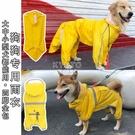 快速出貨泰迪博美金毛阿拉斯加狗狗雨衣四腳全包大中小型犬通用雨披