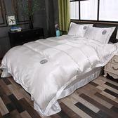 床包組   床上用品薄款單人雙人被子四件套夏天冰絲情侶公主風床單被套