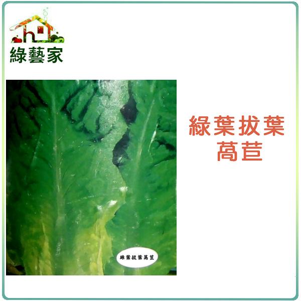 【綠藝家】A30.綠葉拔葉甜萵苣種子800顆(日本進口拔葉A菜,韓國烤肉使用包肉生菜)