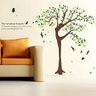 創意無痕壁貼 牆貼 背景貼 壁貼樹 時尚組合壁貼 璧貼 自然舞者 《YP1658》快樂生活網