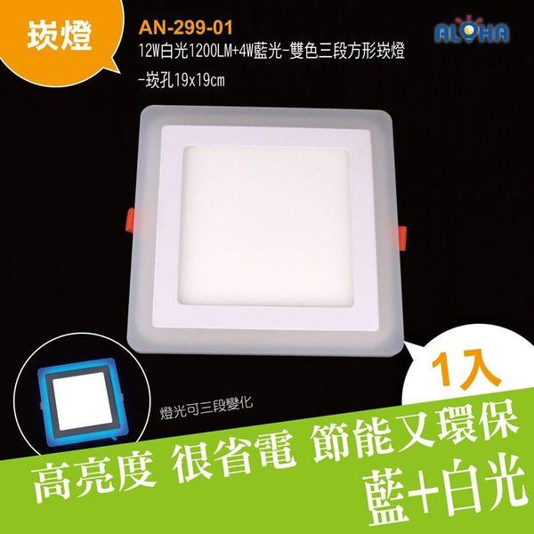 LED燈具 吸頂燈(2入)12W白光1200LM明裝18cm圓形筒燈2835x60燈 (AN-247-03)