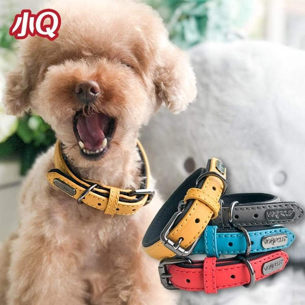 DIRECTIONS寵物狗狗項圈 泰迪項圈脖圈 精致賣萌  范思蓮恩