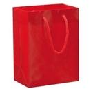 16x21x10cm紙袋400個‧銅版紙上亮P‧附綿繩+口底板-【Fruit Shop】