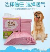 寵物尿不濕  狗狗尿墊寵物尿片加厚大號吸水尿布泰迪狗狗用品尿不濕100片 coco衣巷