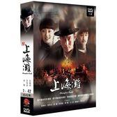 【限量特價】新上海灘 DVD ( 黃曉明/孫儷/黃海波/李雪健/楊奇雨/張亞鵬/陳數 )