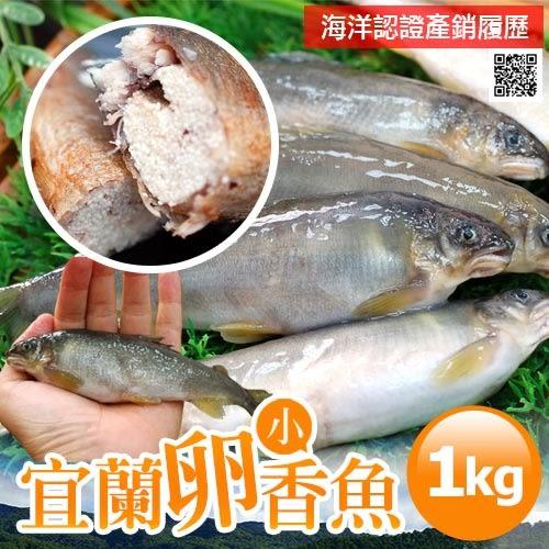 【屏聚美食】宜蘭極品帶卵小香魚(11-17尾裝/1kg±10%/盒)_第2件以上每件↘510元