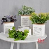 仿真盆栽 仿真北歐植物裝飾小擺件室內植物臥室INS風綠植裝飾迷你創意盆景 11色