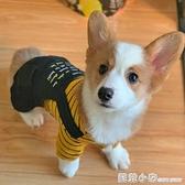 狗狗衣服春夏柯基泰迪中型小型犬幼犬寵物夏季的四腳春秋薄款衛衣 蘇菲小店