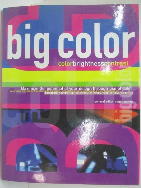 【書寶二手書T1/設計_DP9】Big Color-Color Brightness Contrast_Roger Walton