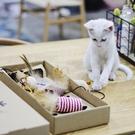 逗貓玩具組合玩具套裝