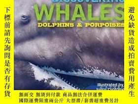 二手書博民逛書店Discovering罕見Whales, Dolphins & PorpoisesY410016 Kelly
