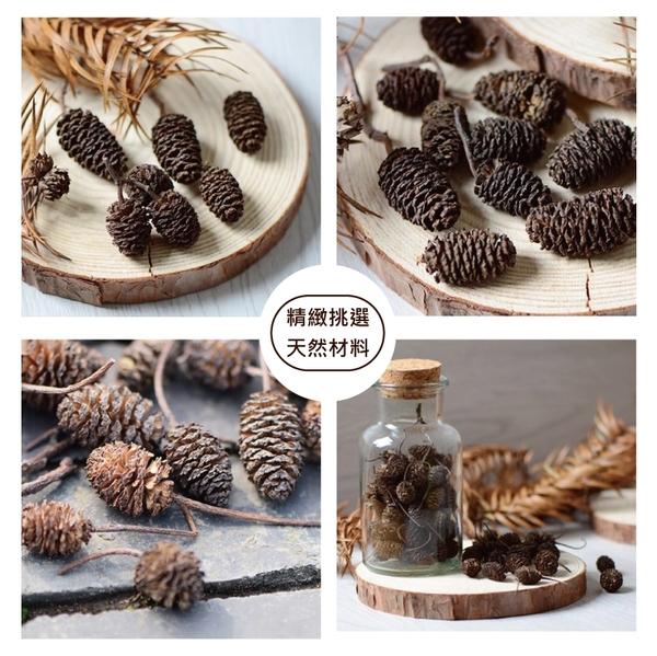 【05004】天然乾燥塔松果粒 乾果 聖誕節 花圈 DIY材料 香薰蠟燭材料 玻璃罩花材