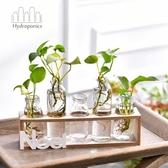 創意水培花瓶透明玻璃長型綠蘿植物容器小清新個性擺件桌面裝飾品BLSJ