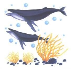 美飾深海海豚轉印膠片(6入)