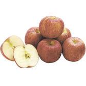 加納小富士蘋果140g*8粒/組