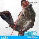 【台北魚市】  金目鱸  550g±10%