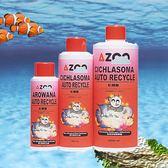 AZOO 彩鯛菌 500ml