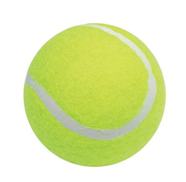 義大文具~成功 4311 一般網球
