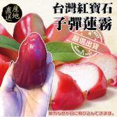 【果之蔬-全省免運】屏東子彈蓮霧X1箱(5斤±10%含箱重/箱 )