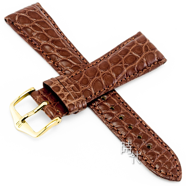 【台南 時代鐘錶 海奕施 HIRSCH】鱷魚皮錶帶 Regent M  金亞光棕色 附工具 04107179 經典 鱷魚皮