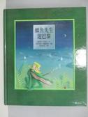【書寶二手書T7/少年童書_PHJ】鱷魚先生遊巴黎_彼得尼科
