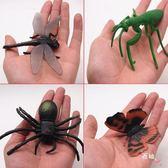 兒童早教益智玩具仿真昆蟲玩具模型動物塑膠模型昆蟲1-2-3-6周歲 全館免運