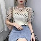 泡泡袖 夏季新款網紗短袖打底衫女ins潮內搭波點修身雪紡泡泡袖上衣