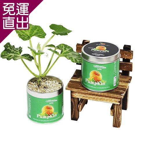 迎光 Cultivation Table栽培罐玩具南瓜【免運直出】