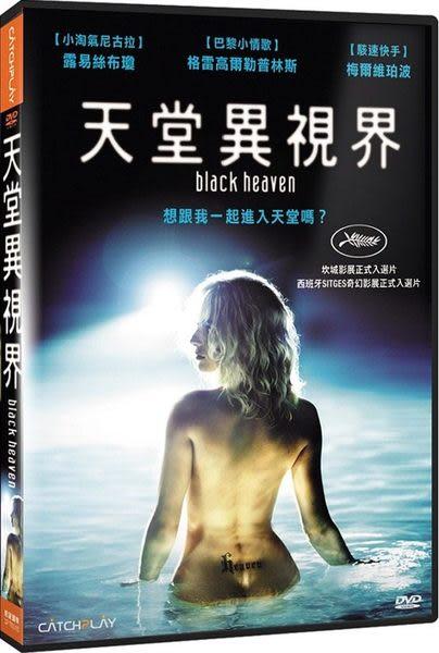 天堂異視界 DVD (音樂影片購)