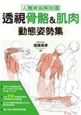 透視骨骼&肌肉動態姿勢集