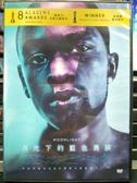 影音專賣店-P03-175-正版DVD-電影【月光下的藍色男孩】-奧斯卡最佳影片