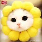 太陽花帽子貓咪狗狗甜甜圈拍照頭套泰迪幼犬英美短寵物頭飾向日葵 樂活生活館