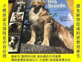 二手書博民逛書店Encyclopaedia罕見of Dog Breeds 狗品種
