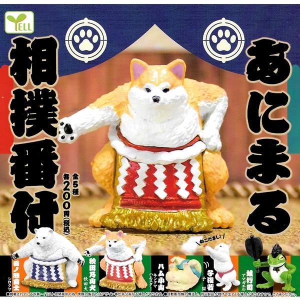 全套5款【日本正版】相撲動物東西軍 扭蛋 轉蛋 相撲動物 相撲選手 YELL - 825370