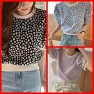 針織上衣 韓系春夏圓領短版短袖針織衫女 共3色 依米迦