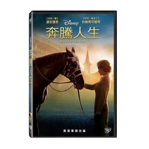 奔騰人生 DVD(購潮8)