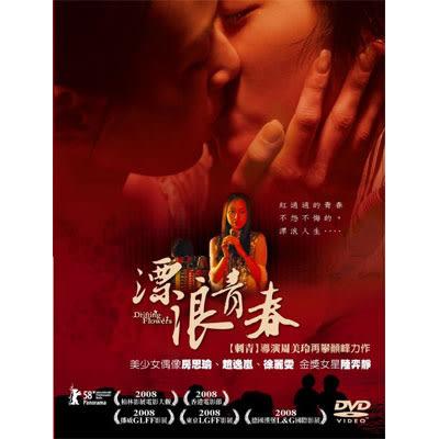 漂浪青春DVD (雙碟版) 房思瑜/趙逸嵐