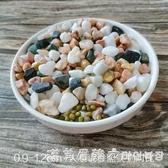 白石子天然雨花石鵝卵石裝飾盆栽白色石子多肉鋪面石頭五彩色魚缸 NMS漾美眉韓衣