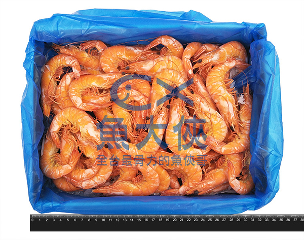1B4A【魚大俠】SP064特大泰國極品30/40熟白蝦(1.2kg/盒)#熟熟熟