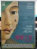 挖寶二手片-P25-053-正版DVD-電影【蜂蜜之夏】-坎城影展評審團獎(直購價)