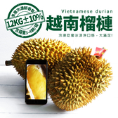 【屏聚美食】鮮採越南金枕頭榴槤原裝箱12KG(3-4顆/箱)免運