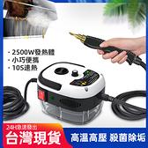 【新北現貨】 高溫高壓蒸汽清潔機空調廚房油煙機油污家用2500W清洗機消毒