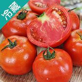 牛蕃茄1盒(500g±5%/盒)【愛買冷藏】
