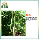 【綠藝家】大包裝G30.蛇瓜種子30顆