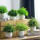 北歐ins仿真植物假草盆栽防尤加利客廳擺設盆景室內裝飾綠植擺件